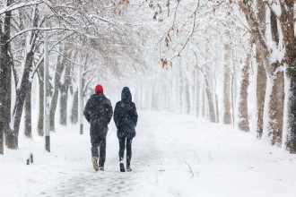 Couple walking during heavy snowstorm on the alley under the trees